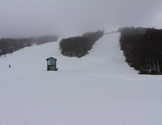 県内でいぢばんはえぐ秋田八幡平スキー場でスキー場開きやったす。