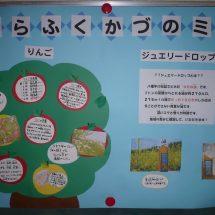 ろうがには給食メニューの産地どが特徴を紹介したポスターが貼ってあったす。
