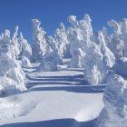 冬なってゆぎふればそどさ出るのもやみなるす。