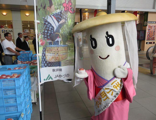 秋田でがんばろう市やったす。