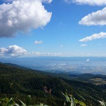 八幡平の山開きまであど少しだすな。