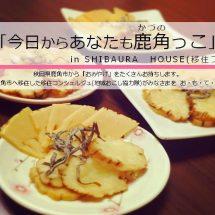「今日からあなたも鹿角っこ」in SHIBAURA HOUSEを開催します。