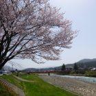 【八幡平アスピーテラインが開通!春の観光シーズンを迎えました!】