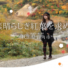 今年の紅葉は、秋田県鹿角市へ! 感動する絶景がここにあります!
